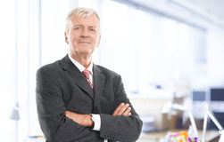 Executive senior businessman. Portrait of executive senior businessman standing at office. Business people Stock Image