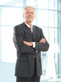 Executive senior businessman. Portrait of executive senior businessman standing at office. Business people Stock Photos