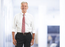 Executive senior businessman. Portrait of executive senior businessman standing at office. Business people Stock Images