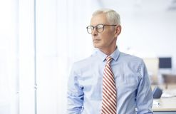 Executive senior businessman portrait. Executive senior businessman wearing shirt and tie while standing at the office and looking away Royalty Free Stock Images
