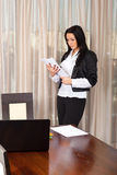 Executive woman reading papers Royalty Free Stock Photo