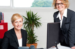 Executive women posing at office Royalty Free Stock Images