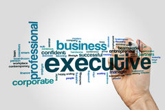 Executive word cloud concept on grey background Royalty Free Stock Image