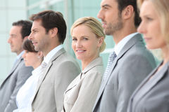 Executives in a row. Executives all stood in a row Royalty Free Stock Image