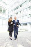 Executivos bem sucedidos do portait Imagem de Stock Royalty Free