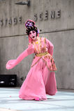 Executor da ópera do Cantonese: Peony Pavillion Imagens de Stock Royalty Free