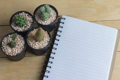 Exemplaarruimte van boek met cactus Stock Foto's