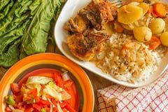 Exemplo cozinhado da refeição com salada do tomate no lado Fotografia de Stock
