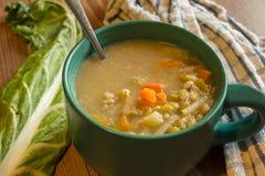 Exemplo da sopa vegetal Foto de Stock