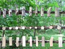 Exemplos do tronco de árvores Fotos de Stock Royalty Free