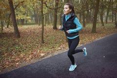 Exercício da manhã Fotografia de Stock