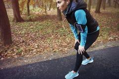 Exercício da manhã Foto de Stock