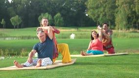 Exercício de formação da ioga do grupo video estoque