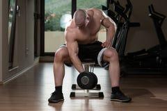 Exercício do bíceps com peso imagem de stock
