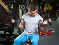 Exercício do Gym Imagem de Stock