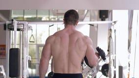 Exercício do Gym, homem muscular dos esportes que dobra os braços com pesos nas mãos durante o treinamento da força na frente do  vídeos de arquivo