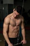 Exercício do tríceps Fotografia de Stock
