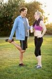 Exercício dos pares Foto de Stock