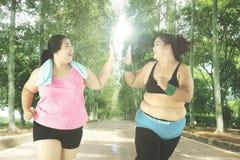Exercício excesso de peso das mulheres no parque Imagens de Stock Royalty Free