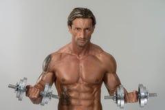 Exercício maduro do homem com pesos em Grey Background Imagens de Stock Royalty Free