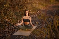 Exercício praticando da ioga da jovem mulher no parque do outono com folhas amarelas Esportes e estilo de vida da recreação fotografia de stock