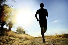 Exercício running do corta-mato do homem novo dianteiro do esporte da silhueta no por do sol do verão Fotos de Stock Royalty Free