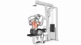 Exercício video dos guias Extremidade do bloco superior do pescoço ilustração do vetor