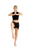 Exercícios Fotografia de Stock