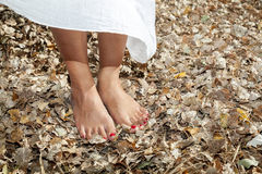 Exercícios da ioga Foto de Stock Royalty Free
