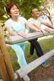 Exercice aîné de couples Photographie stock libre de droits