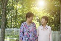 Exercice asiatique de matin de femmes agées, marchant à extérieur Photo libre de droits