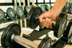 Exercice avec l'haltère Photos stock