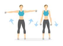 Exercice de bras pour des femmes Photo stock