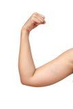 Exercice de Dumbell sain Photographie stock libre de droits