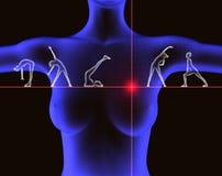 Exercice et santé illustration de vecteur