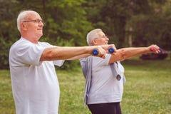 Exercice supérieur - homme plus âgé s'exerçant avec des haltères photo libre de droits