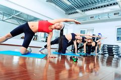 Exercise. Group of young women in the gym centre Stock Photography