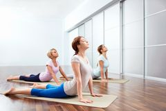 Exercise. Young girls do yoga indoors Royalty Free Stock Photo
