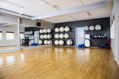 Exercise Balls Arranged In Shelves By Mirror. At gym Royalty Free Stock Photo