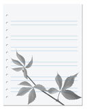 Exercise book with black-white virginia creeper leaf Stock Photography