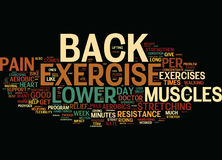 Exercise Can Help Relieve Lower Back Pain Text Background  Word Cloud Concept Royalty Free Stock Image