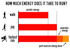 Exercise energy vector illustration