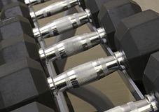 Exercise equipment - dumbbells on weight rack Royalty Free Stock Photo