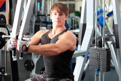 Exercise in a gym Stock Photography