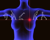 Exercise and health. Illustration of exercise and health Royalty Free Stock Photos