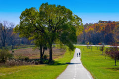 Exercise in the park. A couple is running on a paved walking path in the park on a beautiful fall day Stock Images