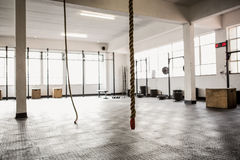 Exercise ropes hanging and equipment Royalty Free Stock Photo