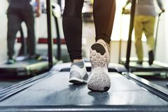 Free Exercise Treadmill Cardio Running Workout At Fitness Gym Of Woman Taking Weight Loss With Machine Aerobic For Slim And Firm Health Royalty Free Stock Photos - 119967488