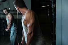 Exercise For Triceps With Cable Royalty Free Stock Photography