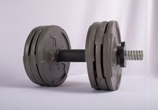 Exercise Weights Stock Images
